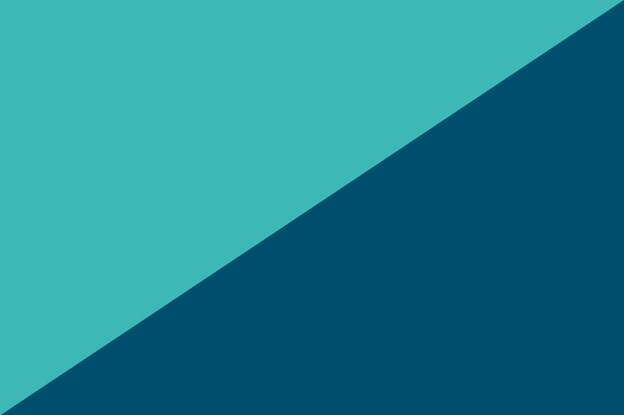 Ethan Anarchy flag